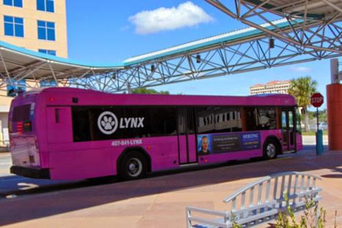 e você vai ver Lynx de todas as cores por Orlando!