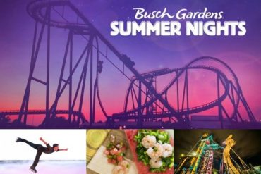 Disney Point Busch Gardens Summer Nights