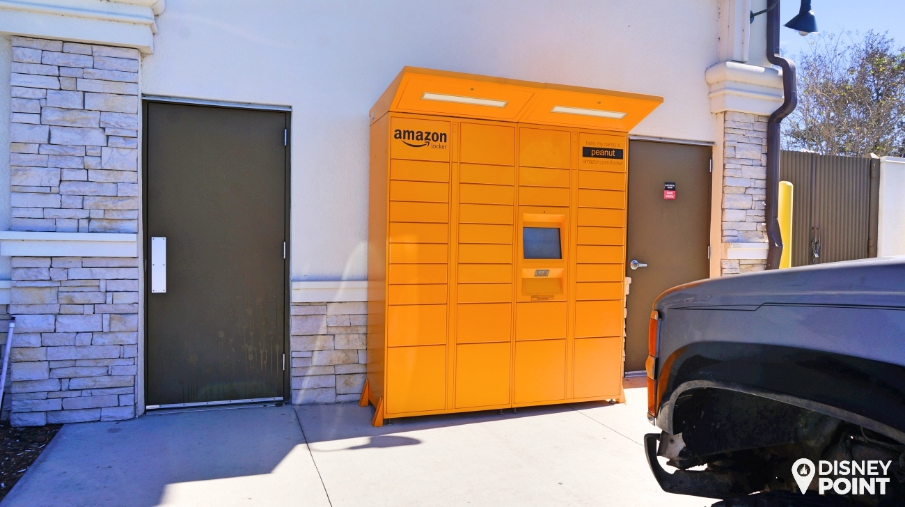 Disney Point Amazon Locker Peanut
