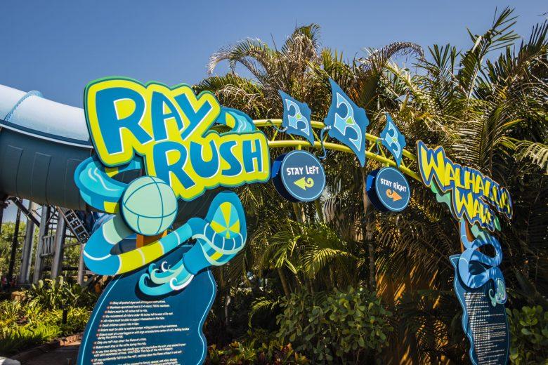 Disney Point Aquatica Entrada Ray Rush