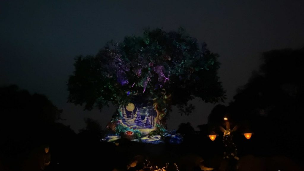 Natal 2020 da Disney Animal Kingdom