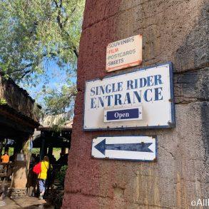 Filas Single Rider Disney